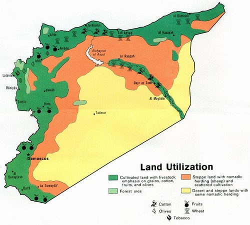Syria land use