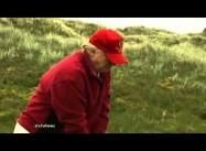 Donald Trump versus the Aberdeen Wind Farm: Fiddling while Rome Burns