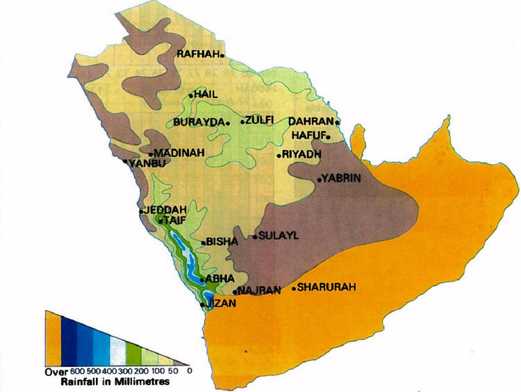 annual rainfall Saudi Arabia