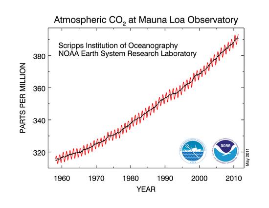 C02 at Mauna Loy Observatory