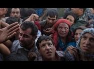 Wars, Disasters displaced 14 Million last Year, 50% Children