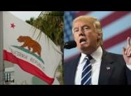 Can Popular Mobilization & Sanctuary stop Trump's Deportation Plans?