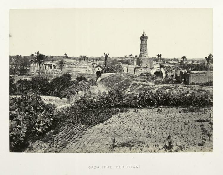 gazaold