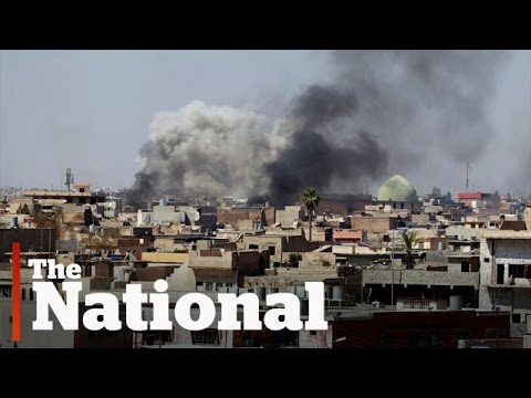 After Trump Massacres in Mosul, Campaign against ISIL Halted