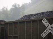 Trump has it Backward:  It is Dirty Coal that's Killing Green Jobs