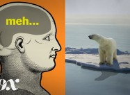 Why humans are so bad at thinking about climate change? (If only poisonous CO2 were black)