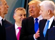 Only Putin is happy with Trump's NATO Bull-in-China-Shop Catastrophe