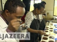 Can Coffee survive Climate Change?