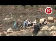 Israeli settlers attack Palestinians picking olives near Nablus: Caught on Film