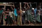 Over 700 Rohingya Children Killed by Myanmar Military