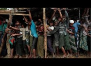 Over 700 Rohingya Children Killed by Myanmar Military
