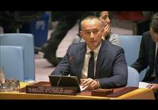 Will Palestine Request Full UN Membership in January 2018?