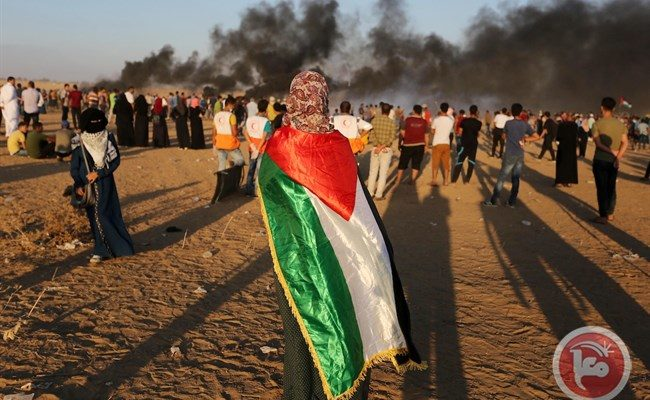 Israeli Army kills a Palestinian in Gaza Every Single Day: Euro-Med