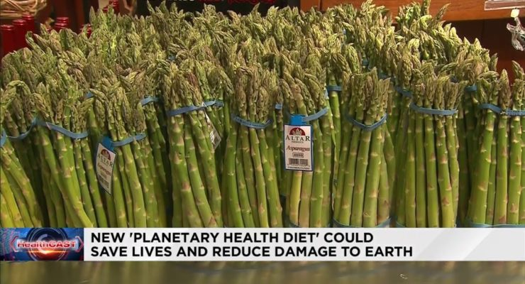 The Fate of the Planet may Depend on You Changing your Diet –  Lancet