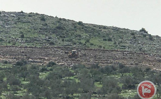 Israeli Bulldozers uproot 300 Palestinian-Owned Trees near Jenin