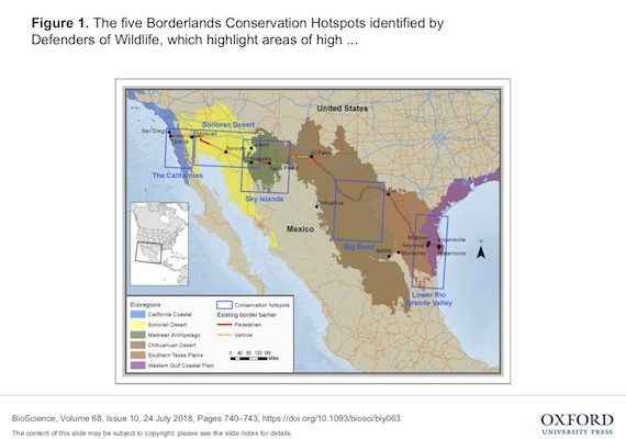 Trump's Wall an Ugly Scar Across Hot Zone of Biological Diversity, Threatening Endangered Species