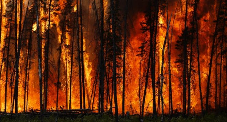 Raging wildfires threaten to turn Northern Hemisphere's forests from vital carbon stores into climate heaters
