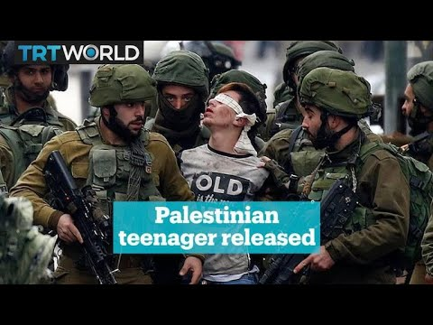 The Systematic Torture of Palestinians in Israeli Detention